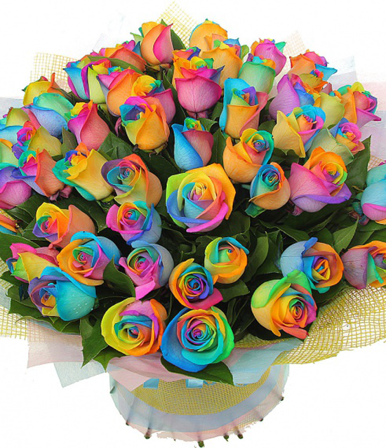 Бежевые цветы фото  photosfloweryru