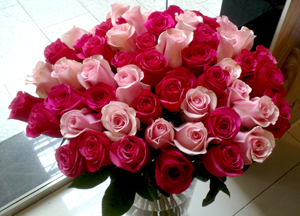 Красных роз идеальный букет роз за