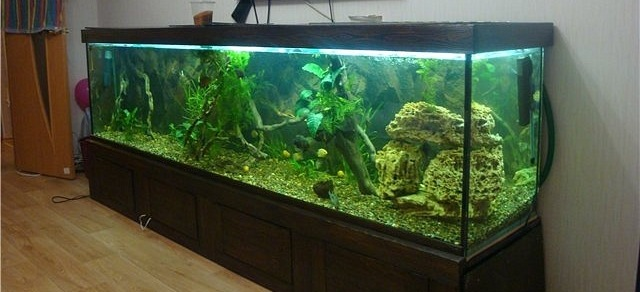 Картинки по запросу Изготовление аквариумов
